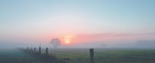 Der Morgen stirbt nie